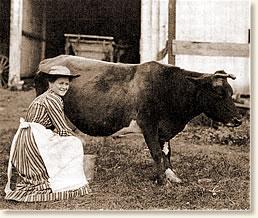 farmwife4.jpg
